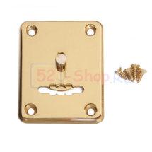 Накладка декоративная Apecs DP-S-01-G-shutter